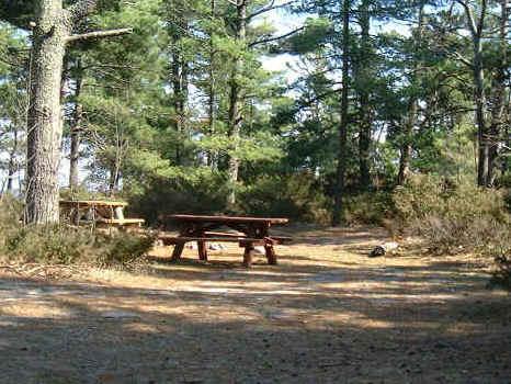 campingshop wagner nidda